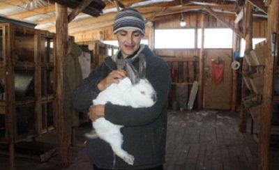 В СКО открыта кроличья ферма