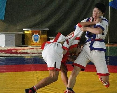Жители Петропавловска соревновались в национальных видах спорта